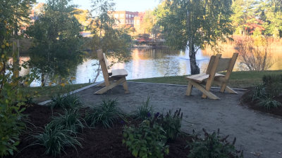 "A new garden overlooking Swan Lake serves both to memorialize the beloved ""swing tree"" and to foster conversations among the UConn community."
